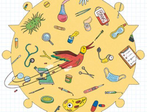 La Grippe, un virus, des canards et des hommes